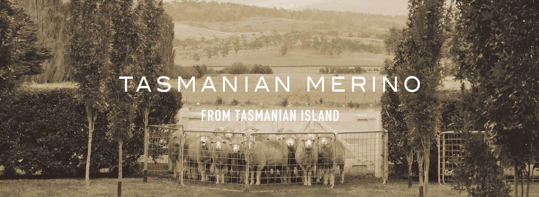 TASMANIAN MERINO -タスマニアン メリノ